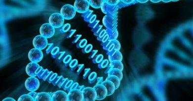 P.G. Diploma (Bioinformatics)